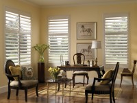 Interior Faux Plantation Shutters